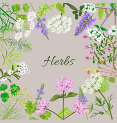 Card with herbal flowers vector