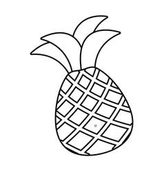 fresh fruit pineapple vector image
