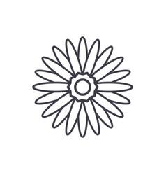 Gerbera flower line icon concept gerbera flower vector