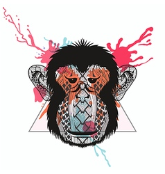 Zentangle stylized Monkey face in triangle frame vector image