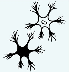 Neuron icon vector