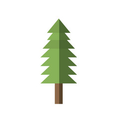 tree pine forest shadow vector image