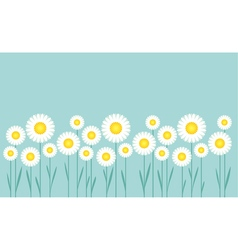 concept simple of daisy on blue sky vector image vector image