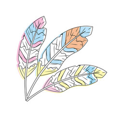 beauty feathers style with decoration design vector image