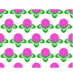 Clover flower pattern vector