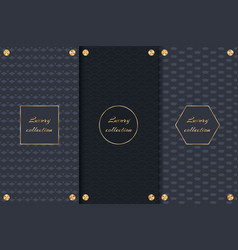 dark backgrounds with gold elements vector image