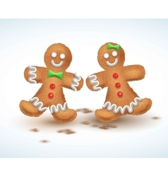 Gingerbread cookies for new vector