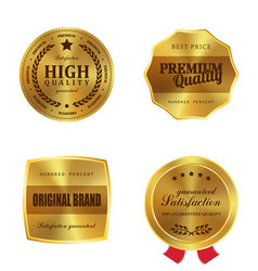 Golden metal badges vector