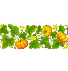 Pumpkin plant pattern on white background vector
