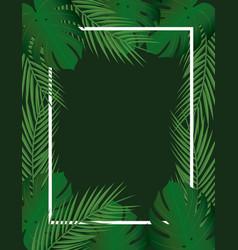 Tropical leaf frame vector