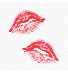 beautiful lips on a transparent background vector image