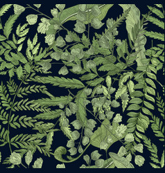 Fern green foliage on black background hand drawn vector