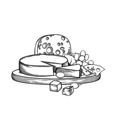graphic design witn different types of cheese and vector image