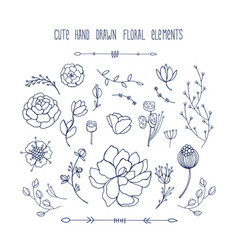 hand drawn floral elements collection leaves vector image