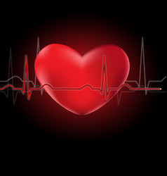 Heart and cardiograph vector