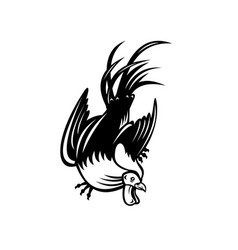 Junglefowl cockerel or rooster in fighting stance vector