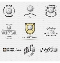 Volleyball badges logos and labels for any use vector