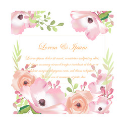 wedding sweet pink flower card vector image