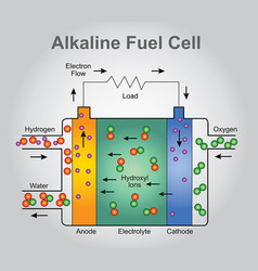 the alkaline fuel cell technologies infographic vector image vector image