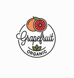 Orange fruit logo round linear logo orange vector