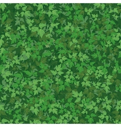 Seamless background maple leaves vector