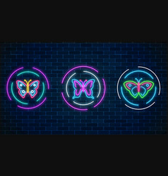 Set of batterfly glowing neon signs in round vector