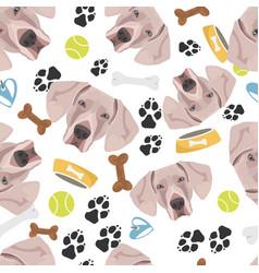 smiling dog weimaraner vector image