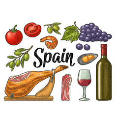 Spain traditional food set vintage color vector