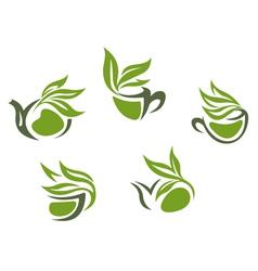 Symbols of green herbal tea vector image