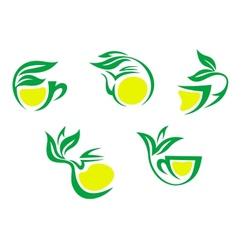 Tea cups symbols with lemon and green leaves vector image