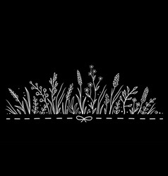 Black background with hand drawn herbs and flowers vector