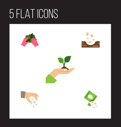 Flat icon plant set of plant sow care and other vector