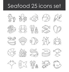 set fish and seafood vector image