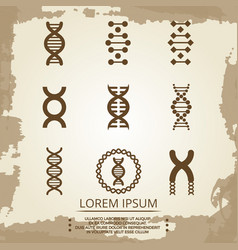 dna icons - vintage biology poster with dna vector image