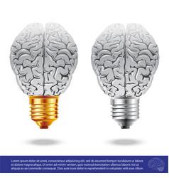 Brain and light bulbs vector