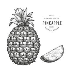 Hand drawn sketch style pineapple organic fresh vector