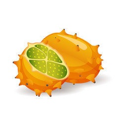 Kiwano or horned melon fruits on white background vector
