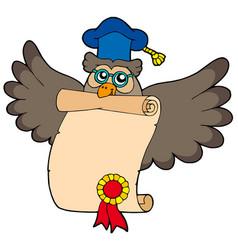 owl teacher with diploma vector image