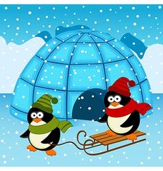 Penguin ice house vector