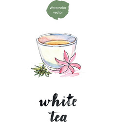 cup of tea with flower and petals tea vector image