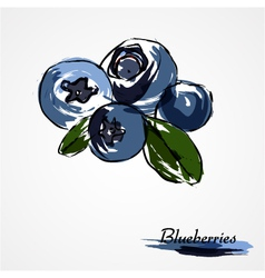 Blueberries huckleberries vector image vector image