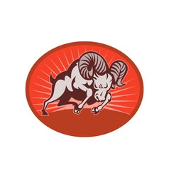 Bighorn sheep or ram attacking vector image