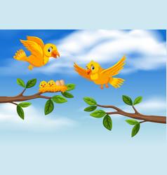 Bird family at tree branch vector