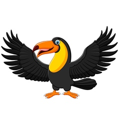Cartoon funny toucan Isolated on white background vector image
