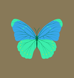 Colorful icon of butterfly isolated on brown vector