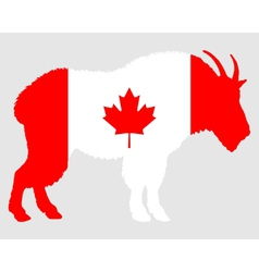 Mountain goat Canada vector