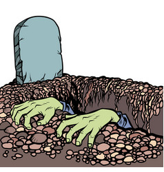 The grave a zombie dead man hands vector