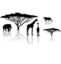 Safari zoo vector
