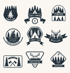 adventure monochrome badges set silhouette of vector image