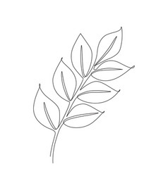 branch one line vector image